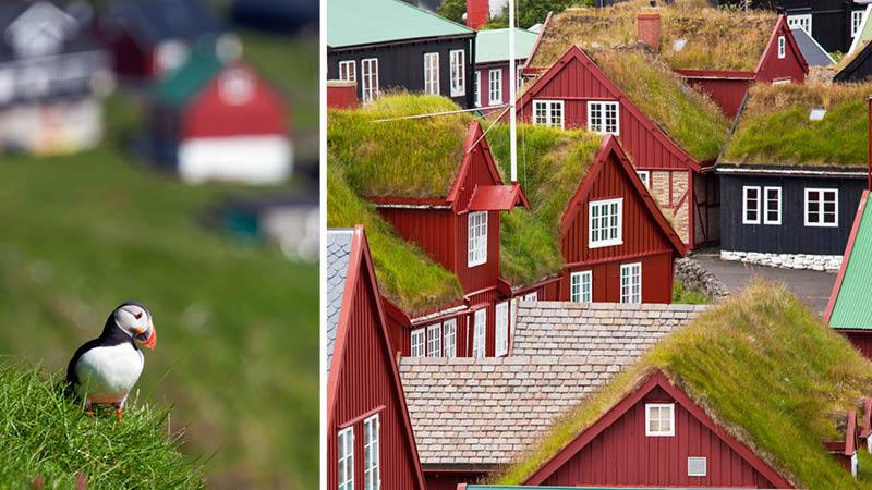 En lunde og Torshavns røde huse