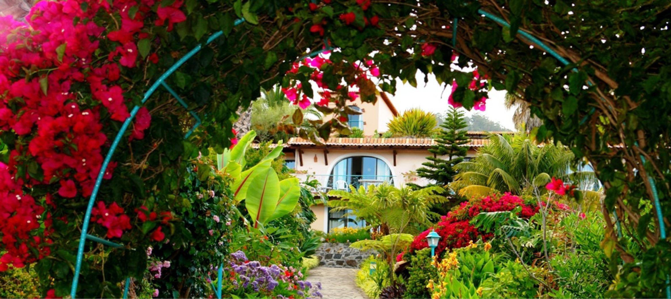 Haverejse til Madeira